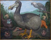 dodo-modern-julian-hume