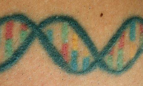 Codi DNA