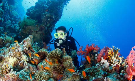Young teenage woman diver explorin coral reef
