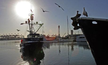 Terminal Island's Fish Harbor