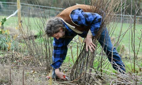 The march checklist gardening life and style the guardian for Gardening jobs for march