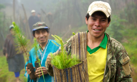 Peru's coffee growers turn carbon traders to save their farms from climate change  Global warming threatens the future of Peru's poorest coffee farmers, but one brand thinks it has found an answer on the financial markets