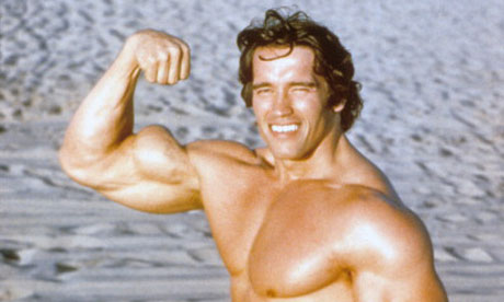 Schwarzenegger takes on Google in battle of Venice Beach