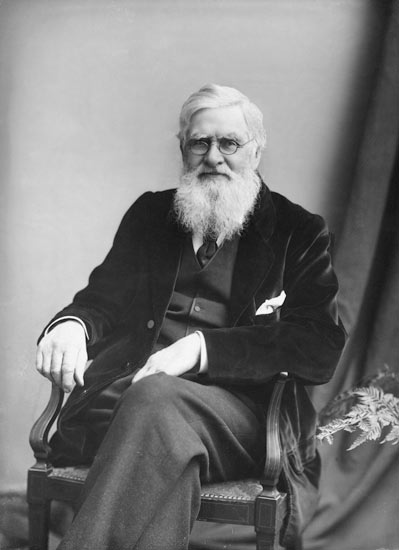 an introduction to the life of alfred russel wallace The paperback of the alfred russel wallace: a life by peter raby at popular introduction to wallace as a readable biography of alfred russel wallace.