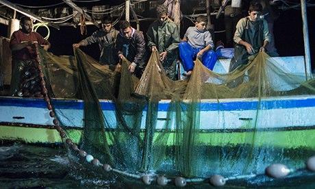 gaza fishermen