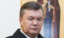 President Viktor Yanukovych, Cohen