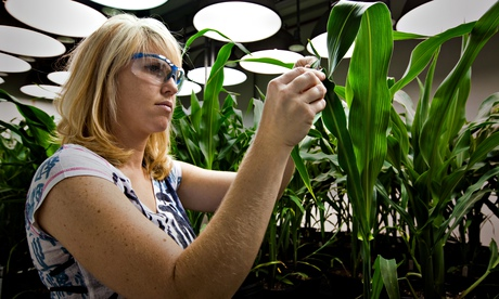 Why GM is the natural solution for future farming