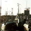 Fishing boats at North Shields fish quay in 2001. Photograph: Owen Humphreys/PA.