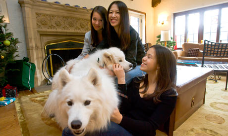 AMY CHUA: 'I'm going to take all your stuffed animals and burn ...