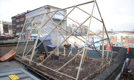 Big society urban farm...