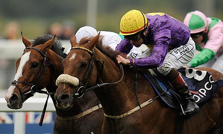 Dermot weld aims rite of passage at royal ascot s 2013 gold cup