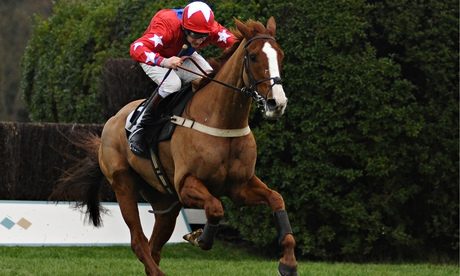 Talking Horses: best bets for Tuesdays racing plus our competition