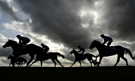 Horse racing tips: Wednesday October 22