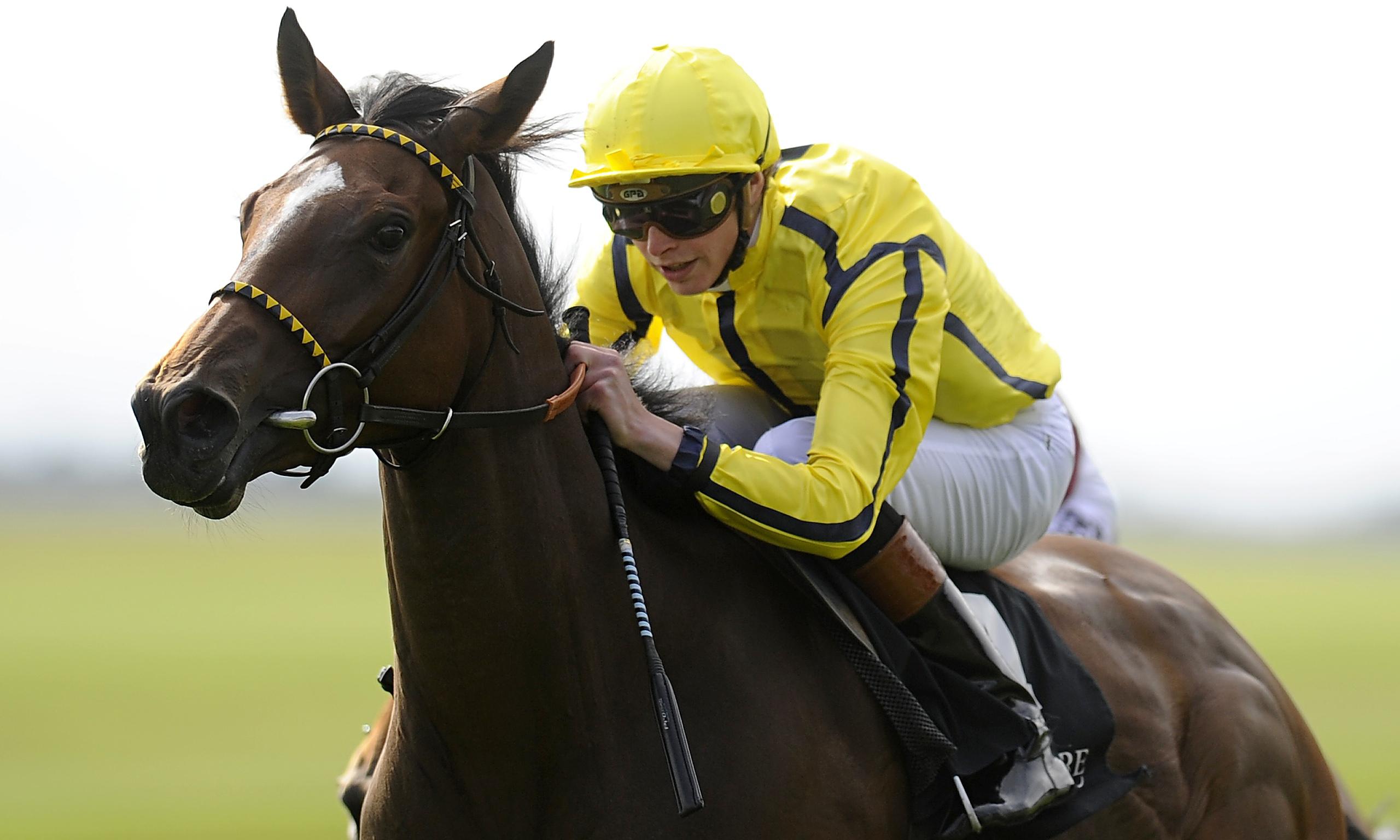 1000 guineas 2013 odds