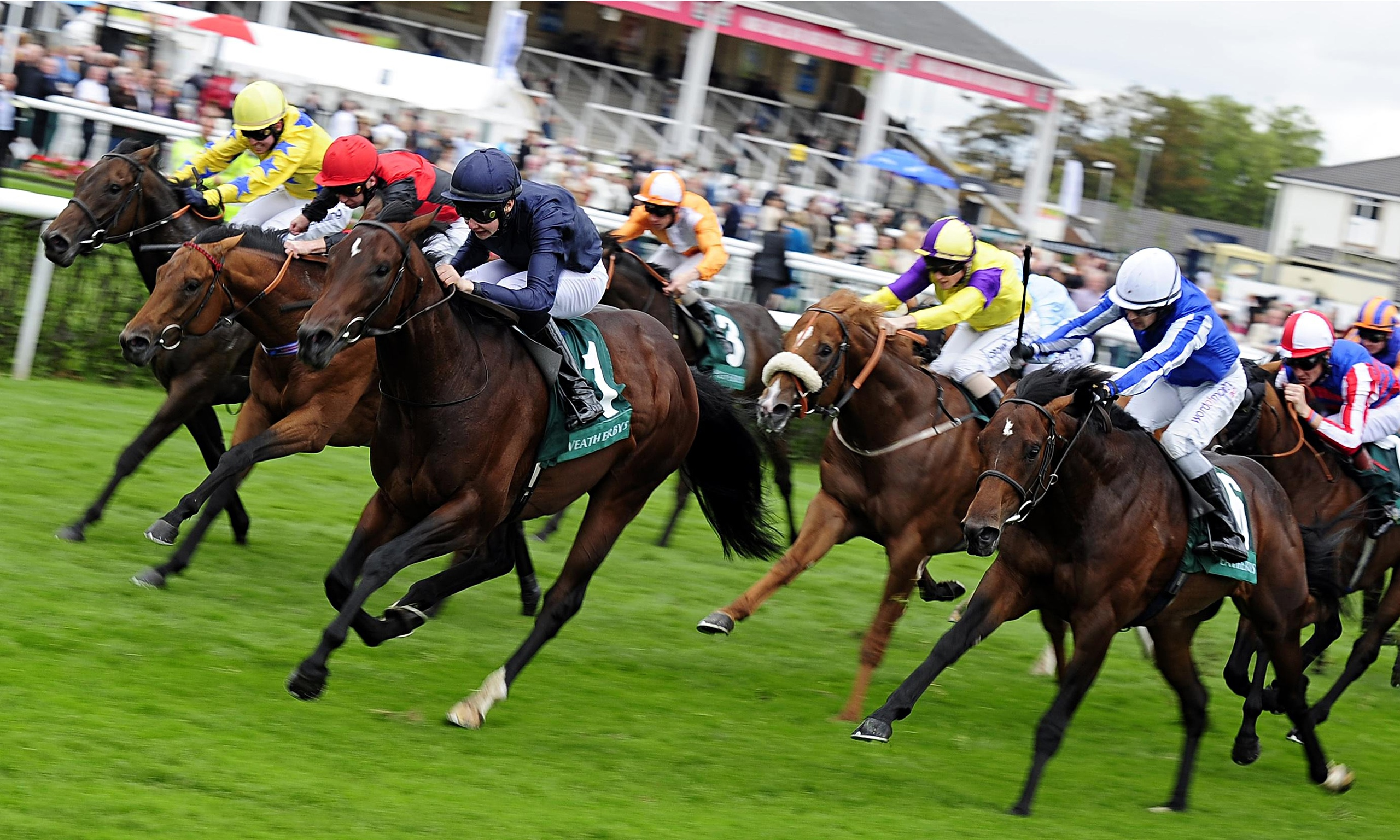 tips on horse racing