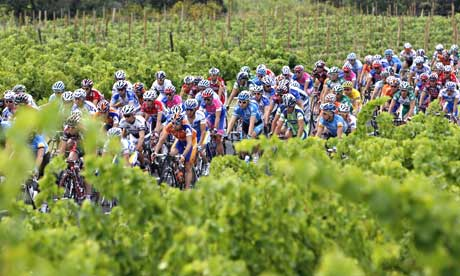 The peloton passes a vineyard on the road to Narbonne