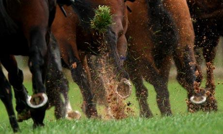 Horse Racing - Weatherby Racecourse