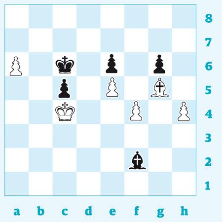 chess 3171