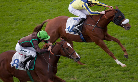 Racehorses compete at Windsor
