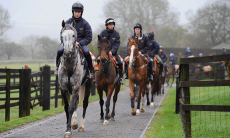 Alan King Stable Visit