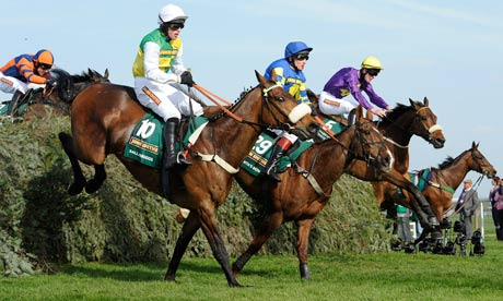 the grand national horses