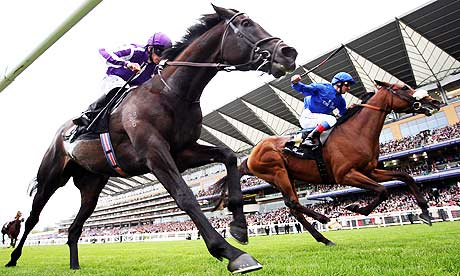 So You Think (near side) and Rewilding race at Royal Ascot