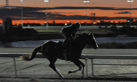 There is Group 1 action at Woodbine racecourse in Canada tonight.