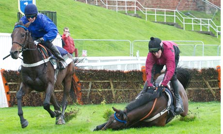 Chester hurdles trial