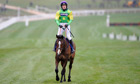 Kauto Star after being pulled up in the Cheltenham Gold Cup