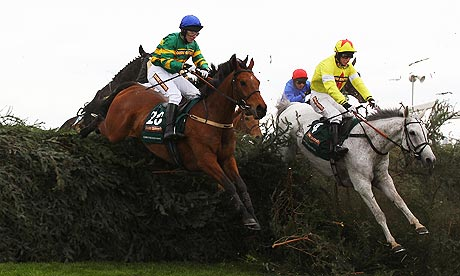 Neptune Collonges (right) and Sunnyhillboy