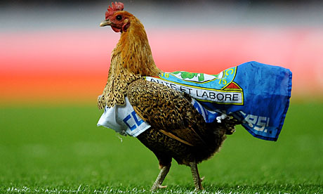 Blackburn Rovers chicken