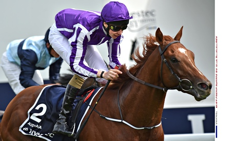 Investec-Derby-horse-racing-Epsom-Surrey