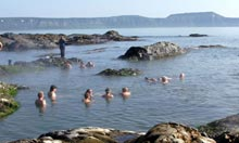 A hot spring in Kamchatka