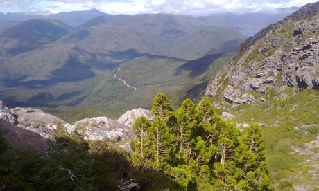 View from Mount Murchison