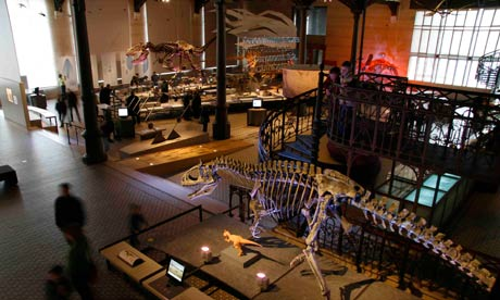 Gallery of Dinosaurs, Museum of Natural Sciences, Brussels