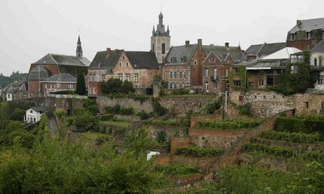 Vineyard in Belgium