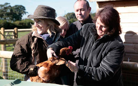 Getting to grips with a chicken at The Piggery