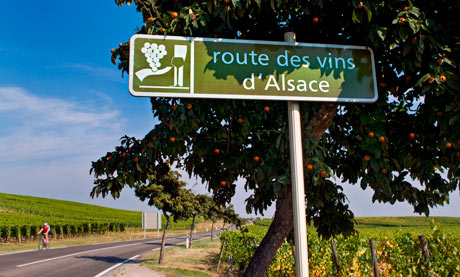 cycling Alsace