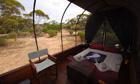 Swagons at Gawler Ranges Safari