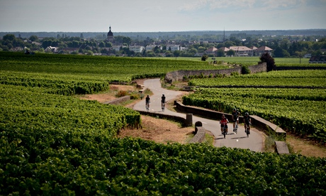 Burgundy by bike: a wine-tasting weekend