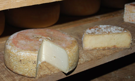 Ossau-Iraty cheese