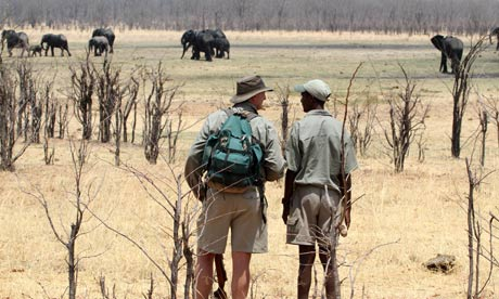 Dave Carson (left) and fellow guide Felix watching elephants at Camp Hwange