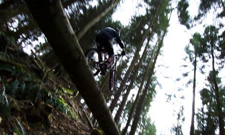 Mountain biker in the freeride section of Haldon Forest Park near Exeter, Devon