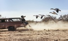 Hanging off the tailgate of a speeding station wagon in Arizona, Des Bartlett films flying snow gees