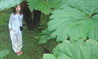 Lucy, the writer's daughter in the jungle in Costa Rica