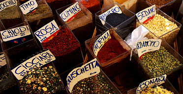 Spices, Rome