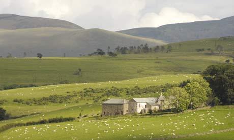Go slow: High Houses, Cumbria