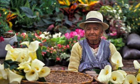 A flower seller in Cuenca, Ecuador