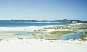 KariKari beach, New Zealand