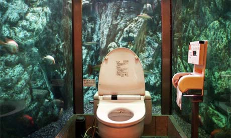 Loo with a view in Japan